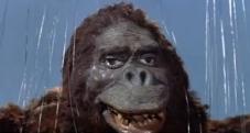 King-Kong-vs_-Godzilla-Kong
